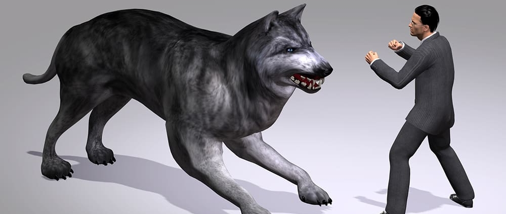 Which Wolf will i Feed Interpersonal Conflict Mary Rafferty Consensus Mediation